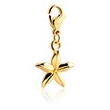Náramky s přívěšky, Charm for Charm Bracelet, Gold Plated Surgical Steel 316L