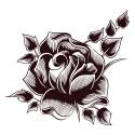 Tatuajes Temporales, Tatuaje temporal