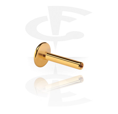Internally Threaded Labret Pin