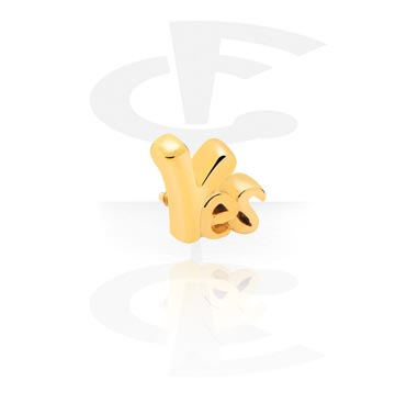 Attachment for Internally Threaded Pins