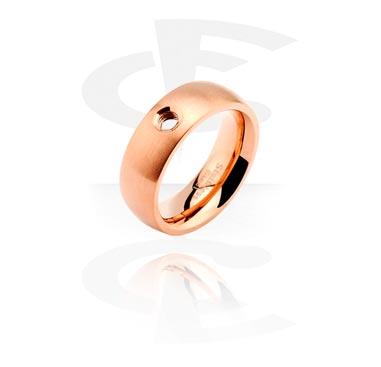 Ring voor X-Changers