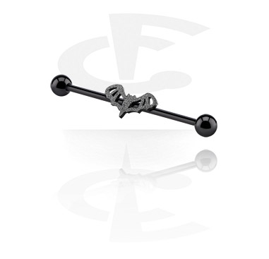 Zwarte Industrial Barbell
