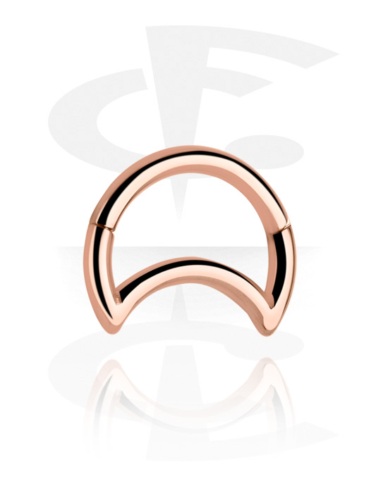 Piercing Rings, Hinged Segment Ring, Rose Gold Plated Surgical Steel 316L