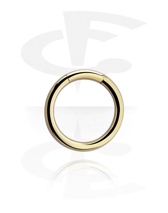 Piercingové kroužky, Segment Ring, Zirkonová ocel