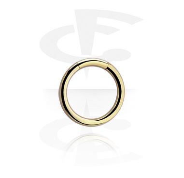 Piercing Rings, Smooth Segment Ring, Zirkon Steel