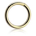 Piercingringar, Smooth Segment Ring, Zirkon Steel